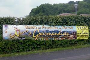 Salon-Saveur-Gourmandises-Cerny- Essonne-meeting-2016 B