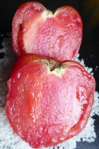 Gout-saveur-tradition-tradition-la-tomate-3